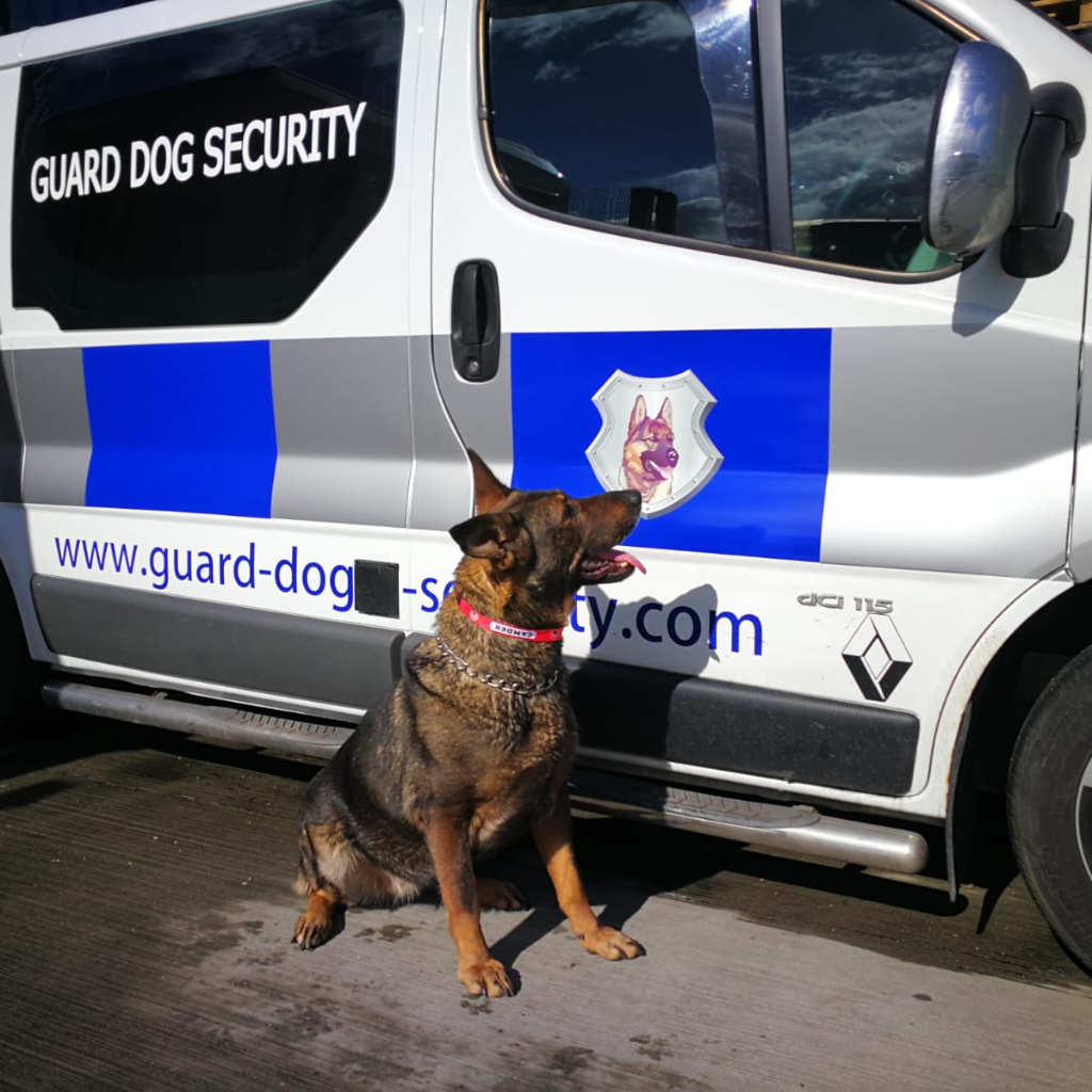 K9 patrols are an affordable cost-effective solution