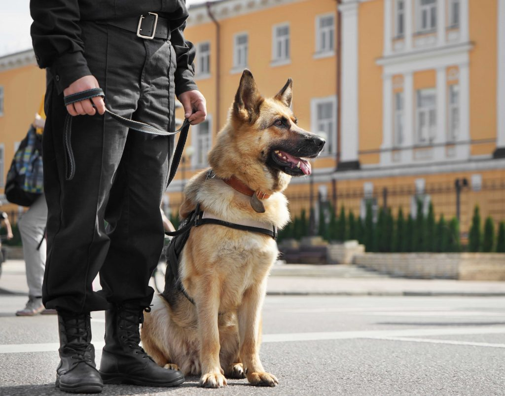 K9 Security Services